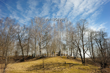Beginning Of Spring, Landscape With Trees On The Hill And Sky Stock Photo