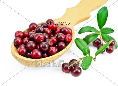 Berry Lingonberry In A Wooden Spoon, Two Branches With Berries And Green Leaves Stock Photo