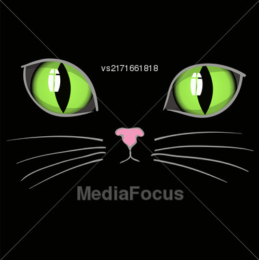 Black Cat Head With Green Eyes. Animal Background Stock Photo