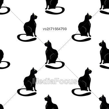 Black Cat On White Seamless Pattern. Animal Background Stock Photo