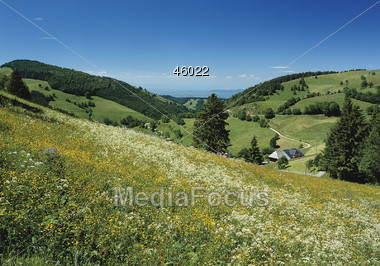 Black Forest, Germany Stock Photo