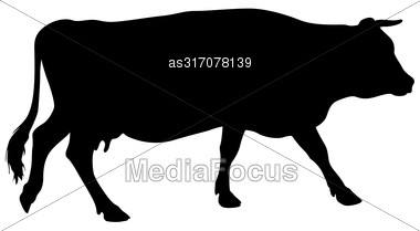 Black Silhouette Of Cash Cow On White Background Stock Photo