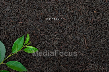 Black Tea With Leafs Stock Photo