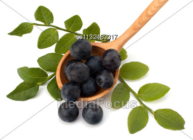 Blue Bilberry Or Whortleberry Isolated On White Background Stock Photo