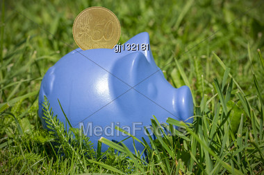Blue Piggy Bank With Coin On The Green Grass Stock Photo