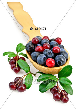 Blueberries And Lingonberry In A Wooden Spoon, Branches With Leaves And Berries Cowberry Isolated On White Background Stock Photo