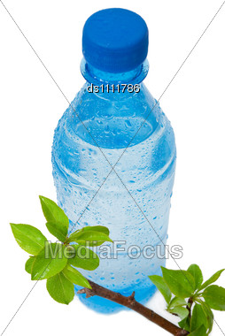 Bottle Of Water With Green Apple Branch Stock Photo