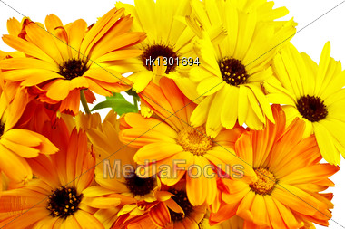 Bouquet Of Marigold Flowers With Green Leaves Stock Photo