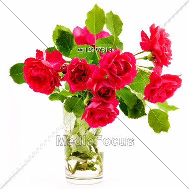 Bouquet Of Red Roses In A Glass Stock Photo