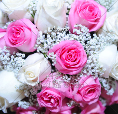 Bouquet Of White And Pink Rose Stock Photo Mf1230322