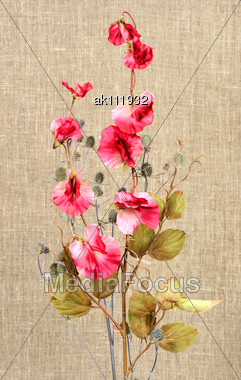 Bouquet With Pink Artificial Flowers And Nature Branch On Textile Background. Close-up. Studio Photography Stock Photo