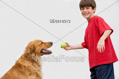 Boy Playing with Dog Stock Photo