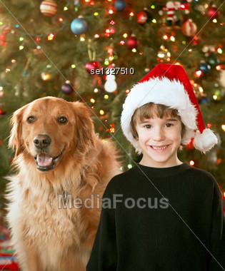 Boys With Santa Hats on Stock Photo