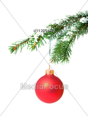 Branch With A Christmas Toy Stock Photo