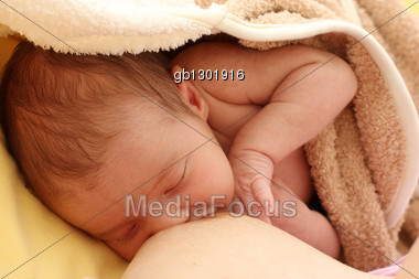 Breastfeeding Stock Photo