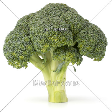Broccoli Vegetable Isolated On White Background Stock Photo
