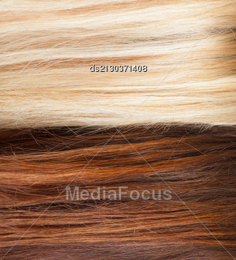 Brown And Blond Hair Background Closeup Macro Hair Salon Or Treatment Concept Stock Photo