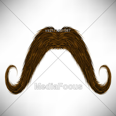 Brown Hairy Mustache Isolated On Grey Background Stock Photo