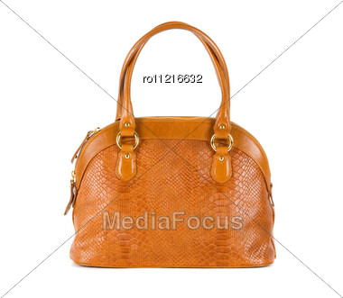 Brown Women Bag, Fashion Of 2011 Year Stock Photo