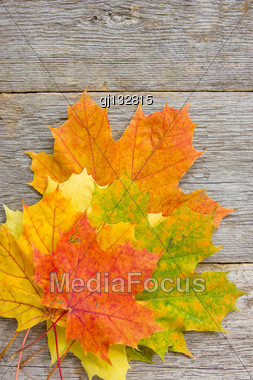 Bunch Of Autumnal Leaves On The Wooden Background Stock Photo