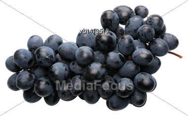 Bunch Of Black Grapes On A White Background, Isolated Stock Photo