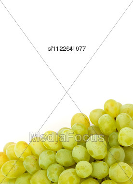 Bunch Of Fresh Grapes Stock Photo