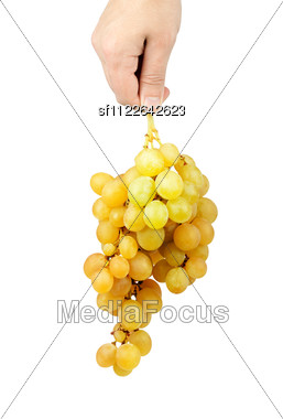 Bunch Of Fresh Green Grapes Stock Photo