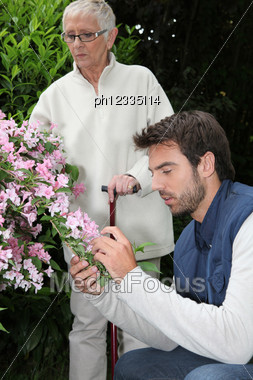 Caring Garden Stock Photo