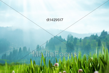 Carpatian Valley With Green Hills And Misty Horizon, Abstract Natural Landscape Stock Photo