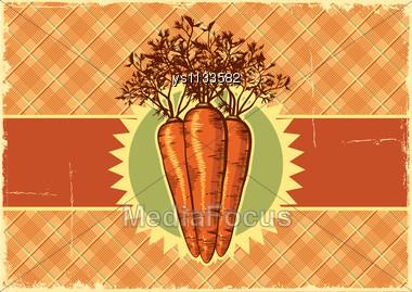 Carrots.Vintage Label Background Vegetable For Design Stock Photo