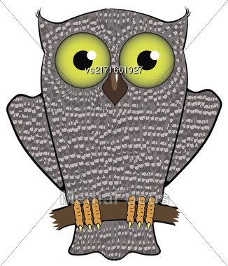 Cartoon Owl Isolated On White Background. Predator Bird Stock Photo