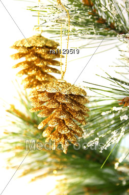 Christmas Cones Hanging On Fir Tree Stock Photo