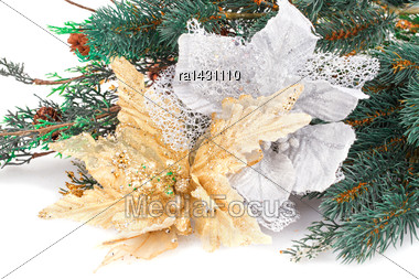 Christmas Decoration With Flowers And Fir-tree Branch Stock Photo