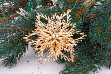 Christmas Decoration With Yellow Flower And Fir-tree Branch Stock Photo