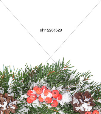 Christmas Green Framework With Snow And Holly Berry Stock Photo
