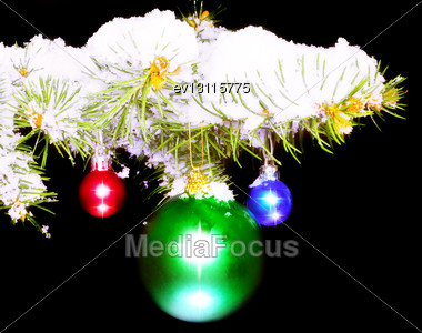 Christmas And New Year Decoration- Balls With Real Snow-covered Fir Branches .On Black Background Stock Photo