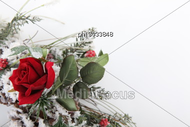 Christmas Rose Bouquet Stock Photo