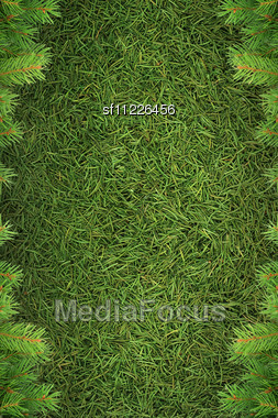 Christmas Spruce Texture Stock Photo