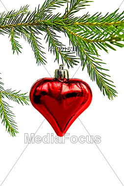 Christmas Toy In The Form Of Heart On The Green Fir Branch Stock Photo