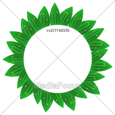 Circle Green Leaves Frame Isolated On White Background Stock Photo