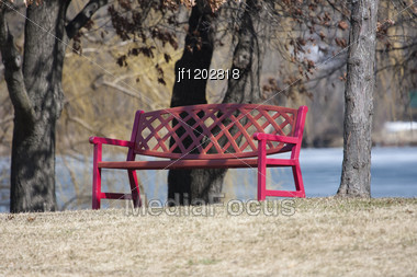 City Park Bench Near Trees In The Park. Stock Photo