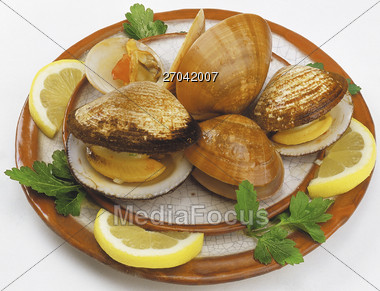 Stock Photo Clam Appetizer Clipart - Image 27042007 - Clam ...