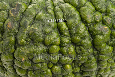 Close-up Of Green Pumpkin. Pumpkin Is Ecological And Natural, Grew In Rural Garden. Stock Photo