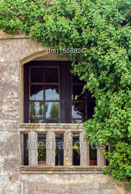 Close-up View Of Antique Balcony With Foliage Stock Photo