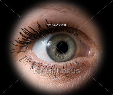 Close Up Of A Woman Grey Eye On Black Stock Photo