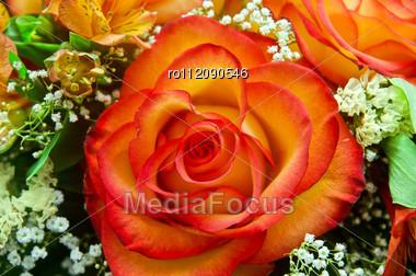 Closeup Of Vibrant Orange Roses Flower Bouquet Stock Photo