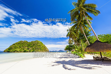 Coconut Palm On The Beauty Beach With Turquoise Water Stock Photo