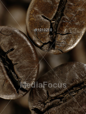 Coffee Bean In Deep Shadows Over Unfocused Grains Background Stock Photo