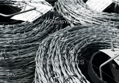 Coils of Barb Wire Stock Photo