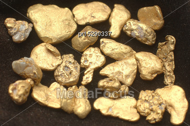 Collection Of Small Gold Nuggets From Grey River Gold Dredge, West Coast, South Island, New Zealand Stock Photo